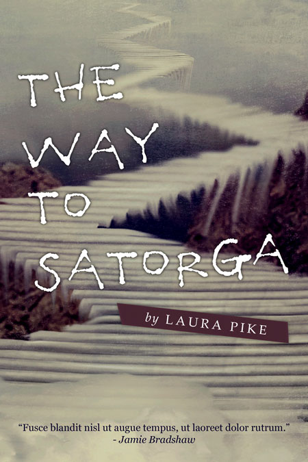 Illustrated Book Cover Questions : The way to satorga illustrated pre made book cover for sale