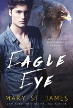Eagle Eyes – Fantasy Premade Book Cover For Sale @ Beetiful Book Covers