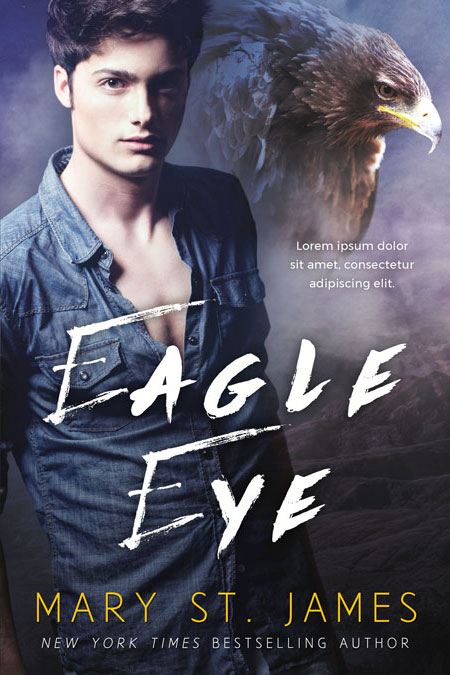 Eagle Eyes - Fantasy Premade Book Cover For Sale @ Beetiful Book Covers