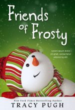 Friends of Frosty – Christmas Juvenile Premade Book Cover For Sale @ Beetiful Book Covers