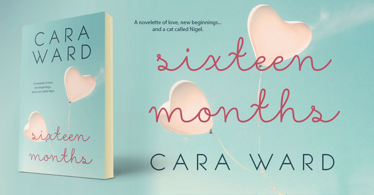 Showcase Spotlight: Sixteen Months by Cara Ward