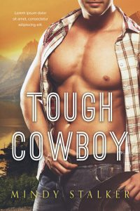 Tough Cowboy - Contemporary Western Romance Premade Book Cover For Sale @ Beetiful Book Covers