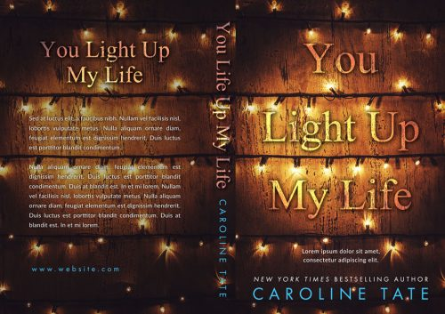 You Light Up My Life - Christmas Premade Book Cover For Sale @ Beetiful Book Covers