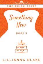 Something New by Lillianna Blake