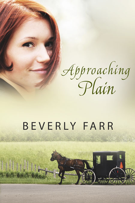 Approaching Plain by Beverly Farr