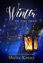 Winter In The Deep – Winter Premade Book Cover For Sale @ Beetiful Book Covers