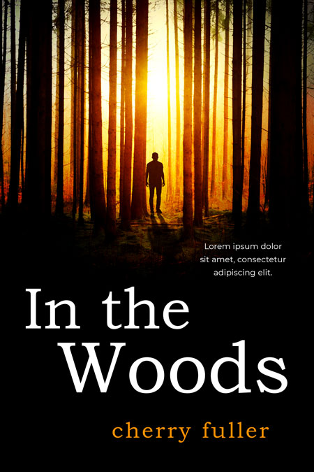 In The Woods - Mystery Premade / Predesigned Book Cover For Sale @ Beetiful Book Covers