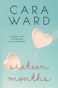 Sixteen Months by Cara Ward