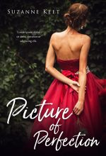 Picture of Perfection – Women's Fiction / Romance / Young Adult Premade Book Cover For Sale @ Beetiful Book Covers