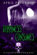Darkness Consumes – Dark Fantasy Series Premade Book Covers For Sale – Beetiful