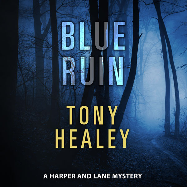 Blue Ruin by Tony Healey