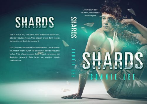 Shards - Thriller / Romantic Suspense Premade Book Cover For Sale @ Beetiful Book Covers