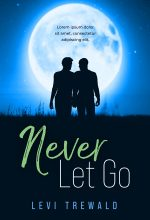 Never Let Go – Gay Contemporary Romance Premade Book Cover For Sale @ Beetiful Book Covers
