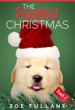 Series: The Pawfect Christmas – Christmas Series Premade Book Covers For Sale – Beetiful
