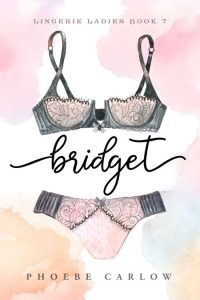 Series: Lingerie Ladies - Contemporary Romance Series Premade Book Covers For Sale - Beetiful Book Covers