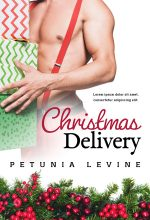 Christmas Delivery – Christmas Romance Premade Book Cover For Sale @ Beetiful Book Covers