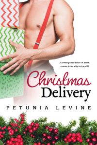 Christmas Delivery - Christmas Romance Premade Book Cover For Sale @ Beetiful Book Covers