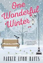 One Wonderful Winter – Illustrated Winter Premade Book Cover For Sale @ Beetiful Book Covers