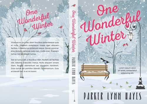 One Wonderful Winter - Illustrated Winter Premade Book Cover For Sale @ Beetiful Book Covers