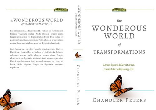 The Wonderous World of Transformations - Non-fiction Self-Help Premade Book Cover For Sale @ Beetiful Book Covers