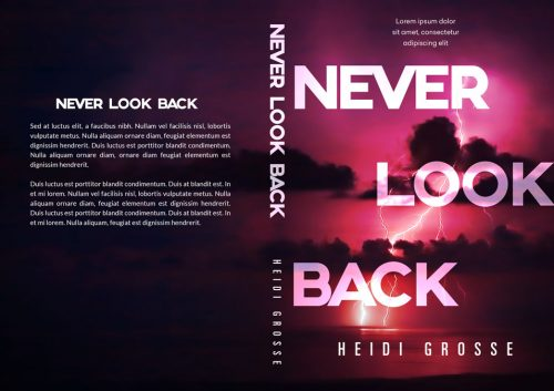 Never Look Back - Mystery / Suspense Premade Book Cover For Sale @ Beetiful Book Covers